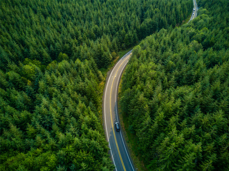 ESG Investing: Exploring Current Opportunities, Emerging Trends and Global Regulations